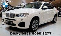 X series: BMW X4 xDrive 28i M Sport (PicsArt_08-18-12.06.58.jpg)