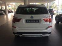 X series: BMW X3 xDrive 20d xLine (IMG_8365.JPG)