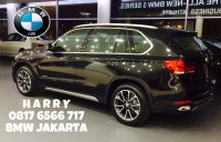 X series: JUAL NEW BMW X5xDrive 35 xLine 2017 (IMG_1597.JPEG)