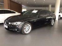 3 series: BMW F30 320i Sport 2016 (IMG_2994.JPG)