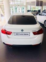 4 series: BMW F36 428i GC Msport 2015 (IMG_2343.jpg)