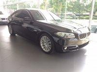 5 series: BMW F10 528i Luxury 2015 (IMG_3009.JPG)