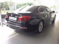 5 series: BMW F10 528i Luxury 2015 (IMG_3013.JPG)