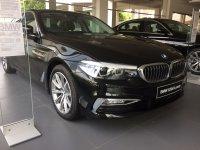 5 series: BMW ALL NEW G30 520d 2017 (IMG_2971.JPG)