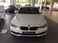 3 series: 2018 BMW New 320i Luxury, Best Price (ready) (IMG_3569.JPG)