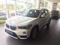 X series: JUAL READY BMW NEW F48 X1 xLine 2018, Promo GIAS (IMG_3189.JPG)