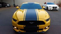 Ford: Mustang Ecoboost 2.3 low km (IMG-20180814-WA0231.jpg)