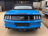 Ford Mustang GT 5.0l V8 Muscle Car (image.jpeg)