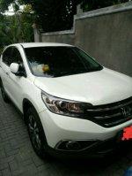 CR-V: Honda CRV 2,4 A/T 2013 PRESTIGE Kodya (288988824_4_644x461_honda-crv-24-a-t-2013-prestige-kodya-mobil.jpg)
