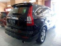 Honda CR-V: All New CRV 2.4 Tahun 2011 (belakang.jpg)