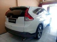 Honda CR-V: Grand New CRV 2.4 Tahun 2012 / 2013 (belakang.jpg)
