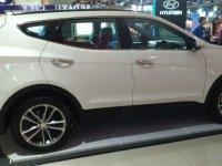 Hyundai Santa FE Premium Big SUV (1493122770335.jpg)