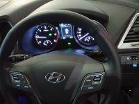 Hyundai Santa FE Premium Big SUV (1493122718745.jpg)