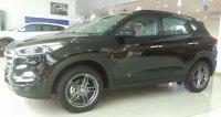 Hyundai All New TUCSON XG GASOLINE (IMG_20180103_092214.jpg)