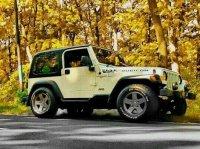 jeep Wrangler TJ 4.0L Renegade Antik