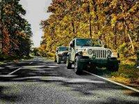 jeep Wrangler TJ 4.0L Renegade Antik (image.jpeg)