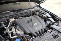 2019 Mazda 3 2.0 Skyactive-G Hatchback New Model Sunroof AT Antik Tdp (JWRB2771.JPG)