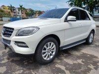 Mercedes-Benz ML Class: Mercy ML250 Diesel AT Putih 2012 (WhatsApp Image 2020-02-08 at 14.01.54.jpeg)