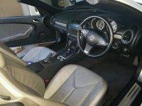 Mercedes-Benz SLK Class: SLK 300 AT  AMG ROADSTER (image.jpeg)