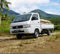 Carry Pick Up: Suzuki New Carry Pick-up. Promo 2020. (pu wd.jpg)
