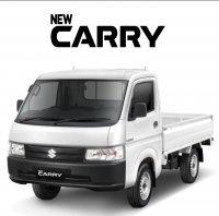 Jual Suzuki Carry Pick Up: New Carry DP 9 jutaan angsuran 120 ribuan /hari