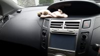 Jual Toyota: Yaris tipe E A/T thn 2009 (ex wanita)