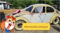 Volkswagen Beetle: vw kodok 1200 tahun 1974 full variasi (TMPDOODLE1499104204455.jpg)